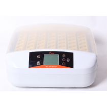 Fully Automatic With Egg Testing Function 56 Eggs Incubator