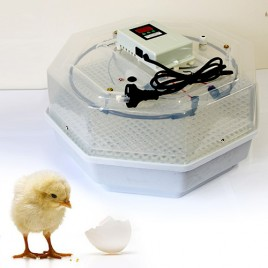 Digital 60 Eggs Incubator With LED Display