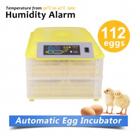 Fully Automatic 112 Eggs Large Incubator Kit