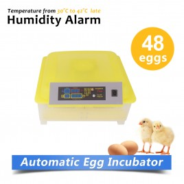 New Model Fully Automatic 48 Eggs Incubator Kit