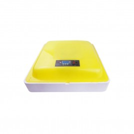 Digital 88 Eggs Incubator With LED Display-Manual Turn