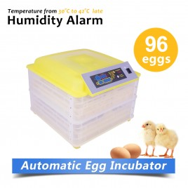 Fully Automatic 96 Eggs Large Incubator Kit