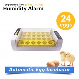 New Model Automatic Clear Digital Chicken Duck Bird 24 Egg Incubator Hatcher