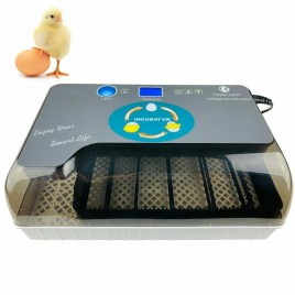 Automatic Digital Chicken Duck Bird 12 Egg Incubator Hatcher