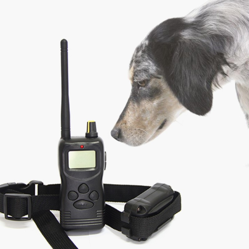 Multi Dog Pet Training System Tame Transmitter Collar
